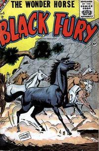 Cover Thumbnail for Black Fury (Charlton, 1955 series) #5