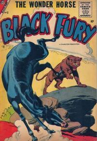 Cover Thumbnail for Black Fury (Charlton, 1955 series) #8