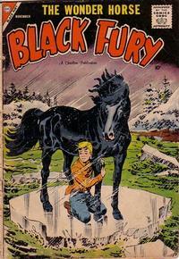 Cover Thumbnail for Black Fury (Charlton, 1955 series) #16