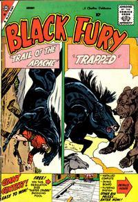 Cover Thumbnail for Black Fury (Charlton, 1955 series) #20