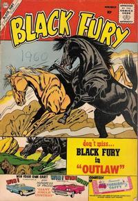 Cover Thumbnail for Black Fury (Charlton, 1955 series) #27