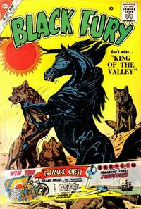 Cover for Black Fury (Charlton, 1955 series) #28