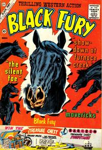 Cover Thumbnail for Black Fury (Charlton, 1955 series) #29