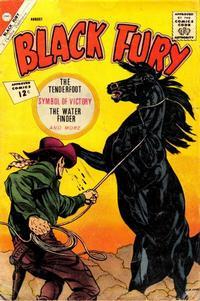 Cover Thumbnail for Black Fury (Charlton, 1955 series) #37