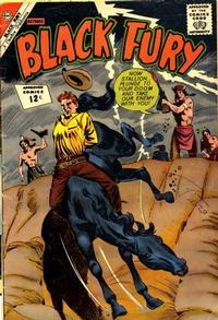 Cover Thumbnail for Black Fury (Charlton, 1955 series) #38