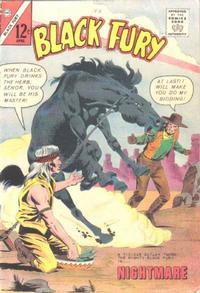 Cover Thumbnail for Black Fury (Charlton, 1955 series) #41
