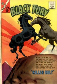 Cover for Black Fury (Charlton, 1955 series) #42