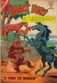 Cover Thumbnail for Black Fury (Charlton, 1955 series) #51