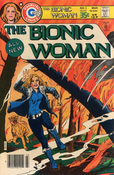 Cover for Bionic Woman (Charlton, 1977 series) #3