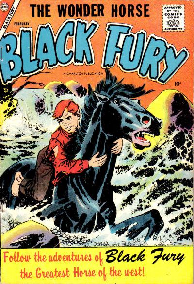 Cover for Black Fury (Charlton, 1955 series) #12