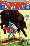 Cover for Superboy (DC, 1949 series) #192