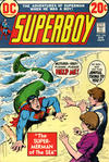Cover for Superboy (DC, 1949 series) #194