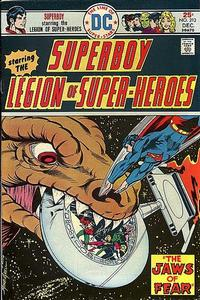 Cover Thumbnail for Superboy (DC, 1949 series) #213