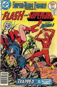 Cover Thumbnail for Super-Team Family (DC, 1975 series) #11