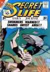 Cover for My Secret Life (Charlton, 1957 series) #41