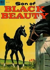 Cover Thumbnail for Four Color (Dell, 1942 series) #510 - Son of Black Beauty