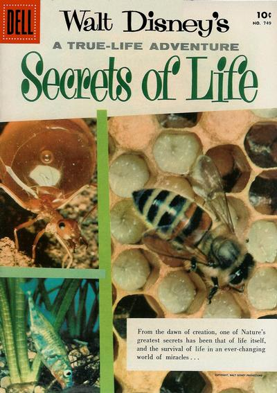 Cover for Four Color (Dell, 1942 series) #749 - Walt Disney's Secrets of Life
