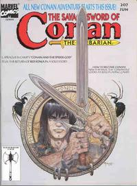 Cover for The Savage Sword of Conan (Marvel, 1974 series) #207