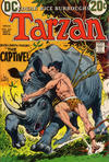 Cover for Tarzan (DC, 1972 series) #212
