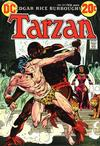 Cover for Tarzan (DC, 1972 series) #217