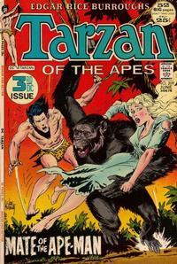Cover for Tarzan (DC, 1972 series) #209