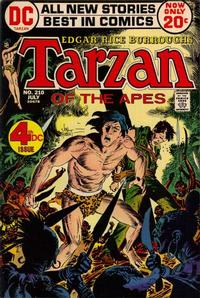 Cover Thumbnail for Tarzan (DC, 1972 series) #210