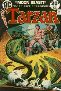 Cover Thumbnail for Tarzan (DC, 1972 series) #225