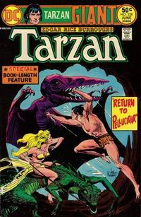 Cover for Tarzan (DC, 1972 series) #238