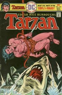 Cover for Tarzan (DC, 1972 series) #243