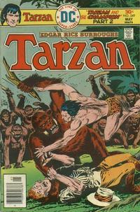 Cover Thumbnail for Tarzan (DC, 1972 series) #249