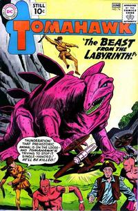 Cover Thumbnail for Tomahawk (DC, 1950 series) #74