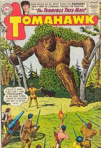 Cover Thumbnail for Tomahawk (DC, 1950 series) #89