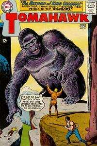 Cover Thumbnail for Tomahawk (DC, 1950 series) #93