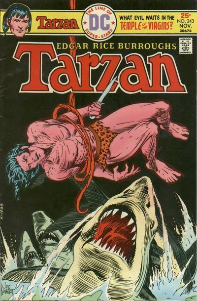 Cover for Tarzan (DC, 1972 series) #243