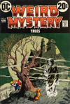 Cover for Weird Mystery Tales (DC, 1972 series) #6