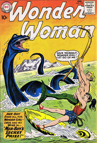 Cover Thumbnail for Wonder Woman (DC, 1942 series) #119