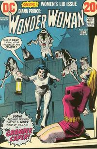 Cover Thumbnail for Wonder Woman (DC, 1942 series) #203