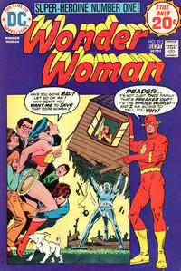 Cover Thumbnail for Wonder Woman (DC, 1942 series) #213
