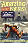 Cover for Amazing Adult Fantasy (Marvel, 1961 series) #13