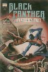Cover for Black Panther: Panther's Prey (Marvel, 1991 series) #2