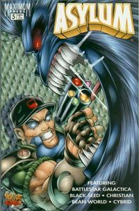 Cover Thumbnail for Asylum (Maximum Press, 1995 series) #5