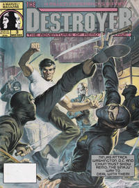 Cover Thumbnail for The Destroyer (Marvel, 1989 series) #3