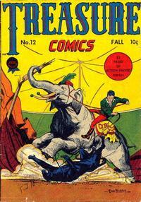 Cover Thumbnail for Treasure Comics (Prize, 1945 series) #12