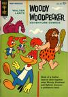 Cover for Walter Lantz Woody Woodpecker (Western, 1962 series) #80