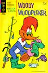 Cover for Walter Lantz Woody Woodpecker (Western, 1962 series) #119