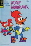 Cover for Walter Lantz Woody Woodpecker (Western, 1962 series) #134
