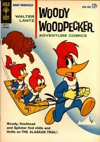 Cover Thumbnail for Walter Lantz Woody Woodpecker (Western, 1962 series) #78