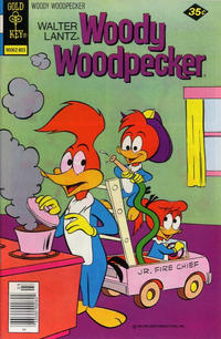 Cover Thumbnail for Walter Lantz Woody Woodpecker (Western, 1962 series) #164