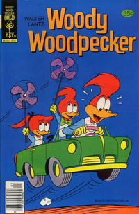 Cover Thumbnail for Walter Lantz Woody Woodpecker (Western, 1962 series) #166 [Gold Key]