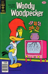 Cover Thumbnail for Walter Lantz Woody Woodpecker (Western, 1962 series) #170 [Gold Key]